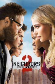 Sąsiedzi 2